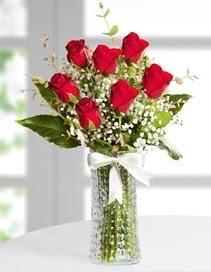 Cam vazoda 7 adet kırmızı gül  İstanbul Üsküdar çiçek , çiçekçi , çiçekçilik