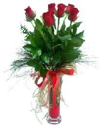 vazo içerisinde 5 kırmızı gül  İstanbul Üsküdar güvenli kaliteli hızlı çiçek