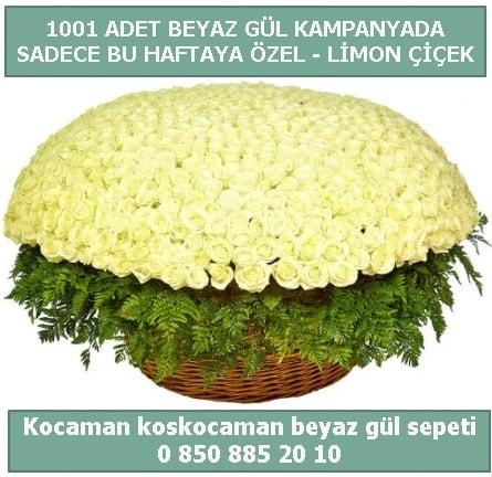 1001 adet beyaz gül sepeti özel kampanyada  İstanbul Üsküdar çiçek gönderme sitemiz güvenlidir